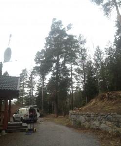 Trädfällning i rönninge, salem1