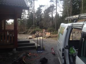 Trädfällning i rönninge, salem